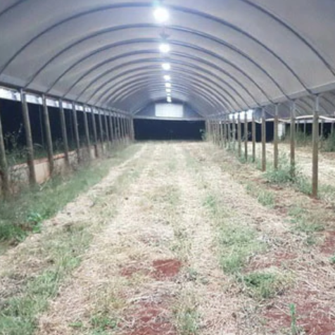 Wandin Valley Farms 1